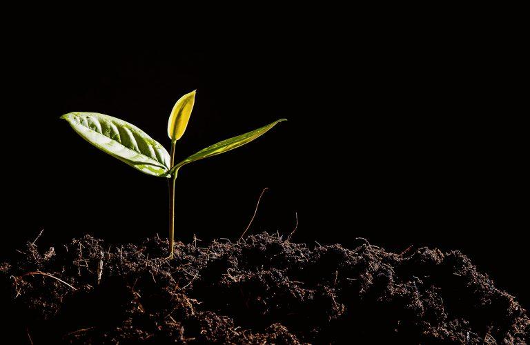 Greentech: